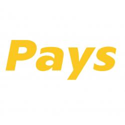 Platební brána Pays (pays.cz)