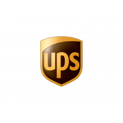 Online podání - UPS - CSV export